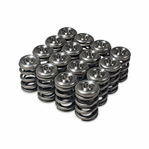 Skunk2 H-Series Alpha Valve Spring and Titanium Retainer Kit