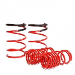 Skunk2 Lowering Springs - Honda Civic Type R EP3