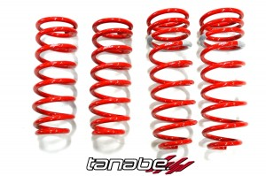 Tanaba DF210 Lowering Springs - Lexus LS430 2001-2006 (Set)