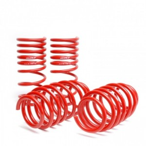 Skunk2 Lowering Springs - Honda Civic 2006-2011